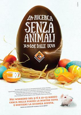 ricerca lav uova