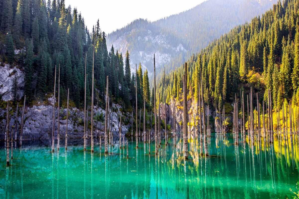 Kaindy foresta sommersa