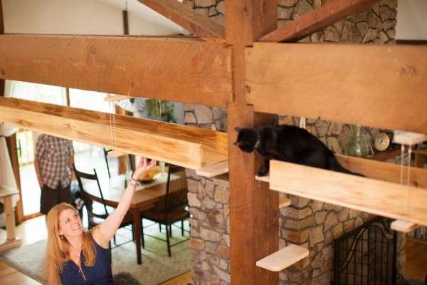 15. casa gatti