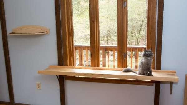 5. casa gatti
