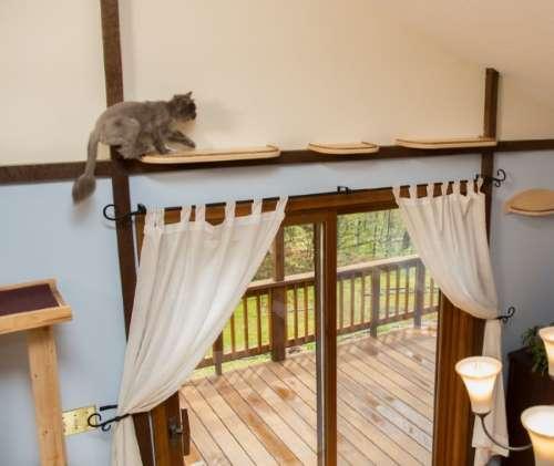 7. casa gatti
