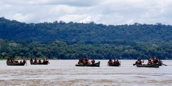 amazzonia diga 5