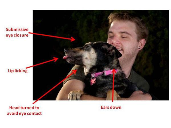 cani segnali stress2