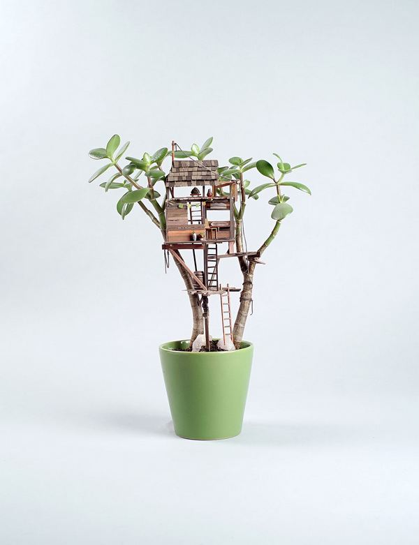 case albero miniatura 8
