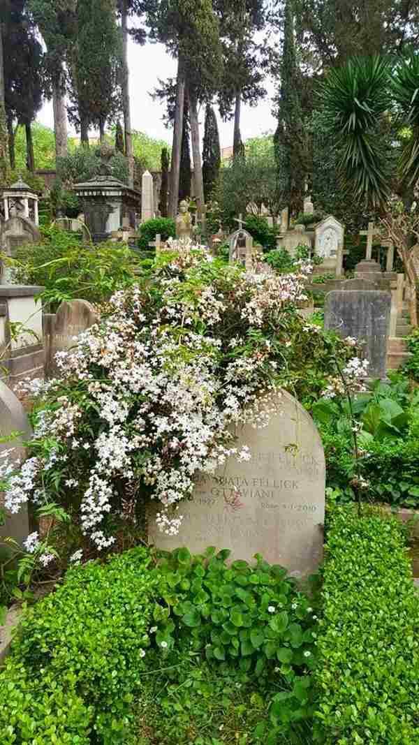 cimitero acattolico roma4