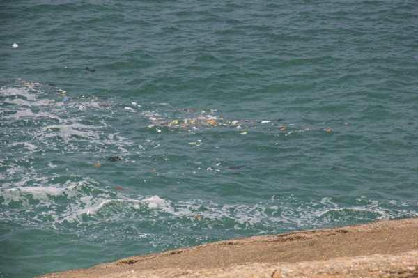 inquinamento spiaggia leblon
