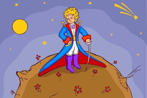 piccolo principe2