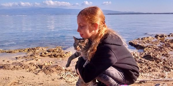 spiaggia gatti sardegna