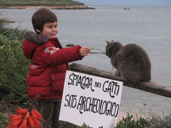 spiaggia gatti sardegna 4