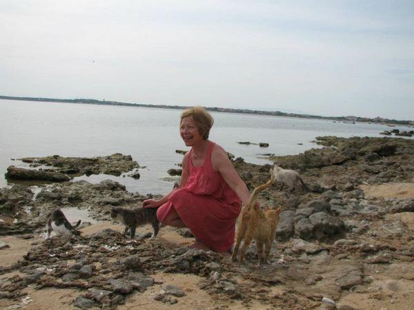 spiaggia gatti sardegna 5