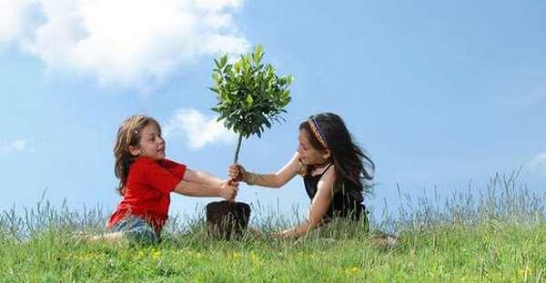 alberi cambiare il mondo