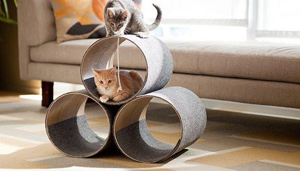 albero gatti cilindi