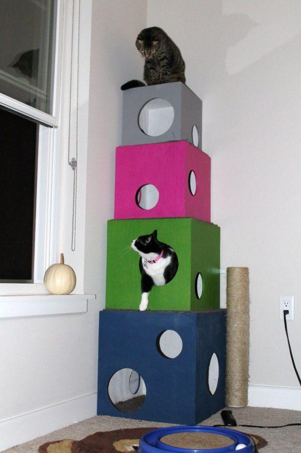 albero gatti oblo