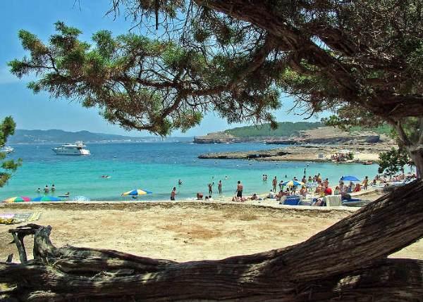 beach cala bassa ibiza