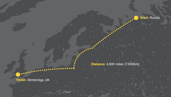 migrazione cigni 1