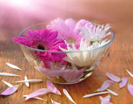 petali-margherite