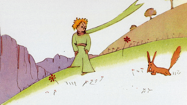 piccolo principe citazioni 7