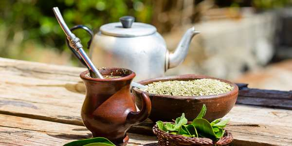 yerba mate proprieta usi