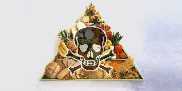 La vera dieta mediterranea fa bene, ma l'attuale dieta dei paesi mediterranei uccide!