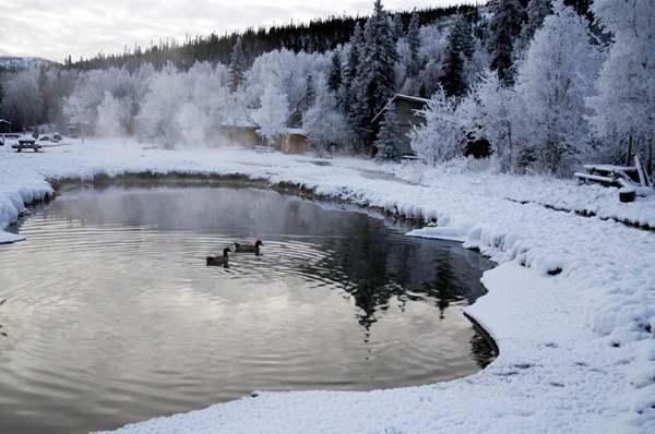 chena hot springs 750