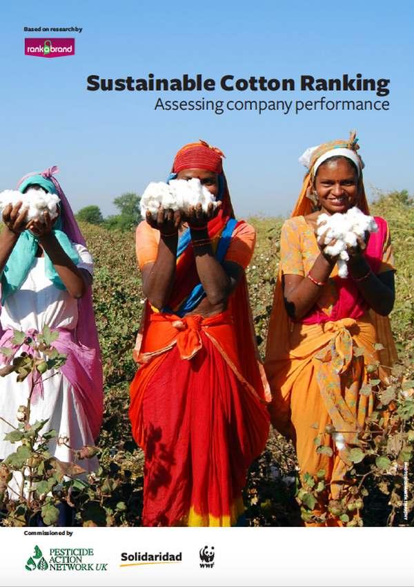 report cotone sostenibile