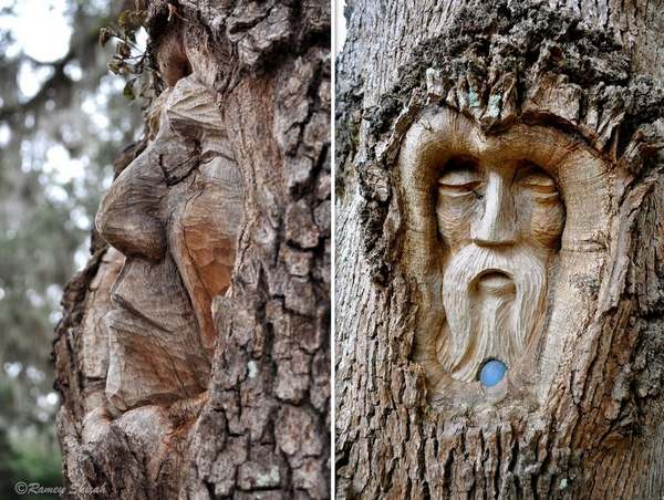 tree spirits 2