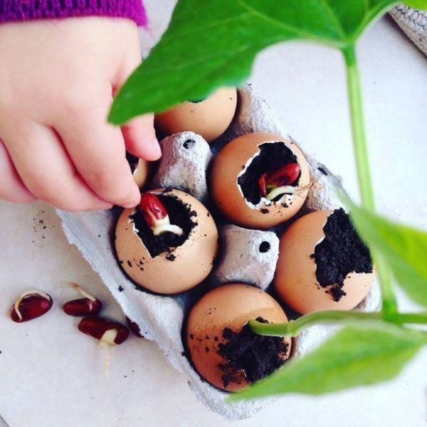 bambina pianta alberi2