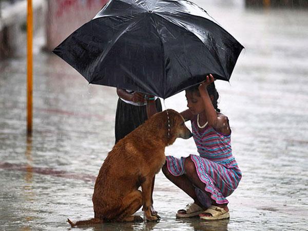 bambini ombrello cane1