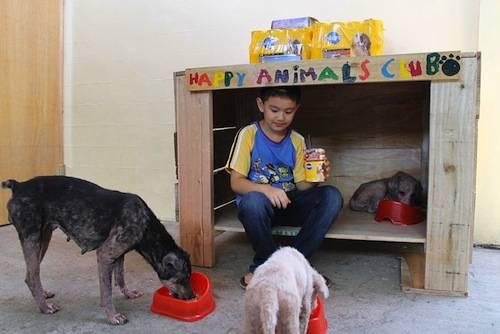 bambini rifugio animali