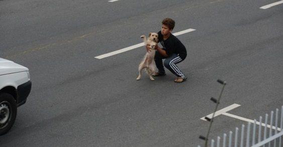 bambini salva cane