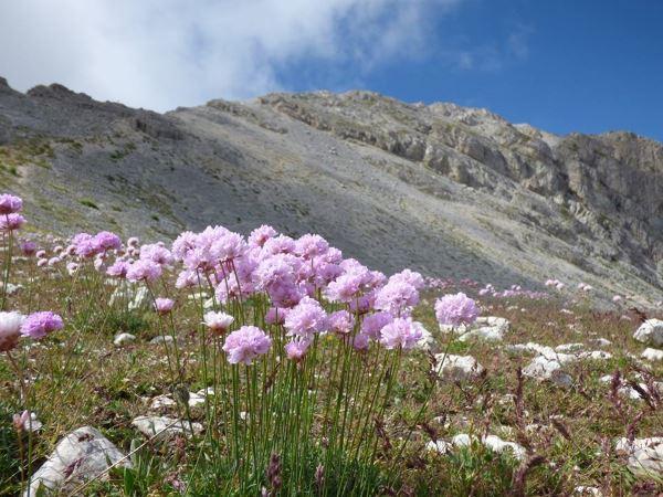cammino biodiversita2