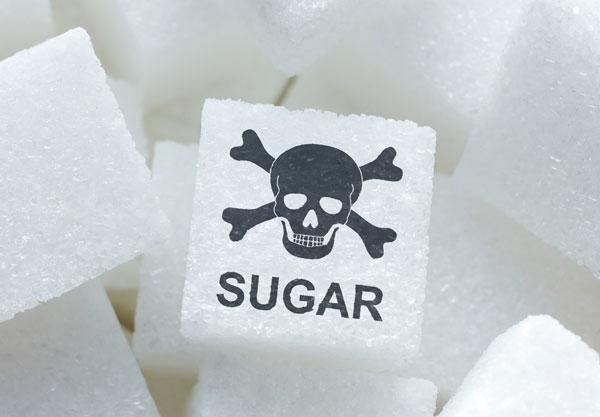 candida zuccheri