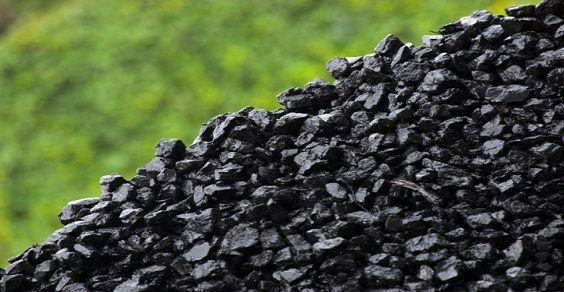 carbone europa wwf