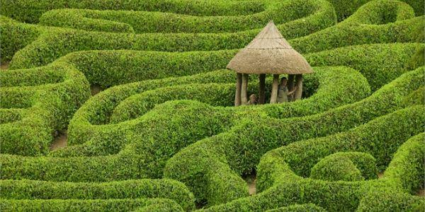 giardino celtico