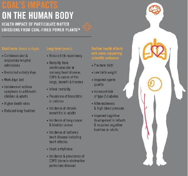 impatti corpo umano ok