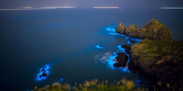 isole matsu