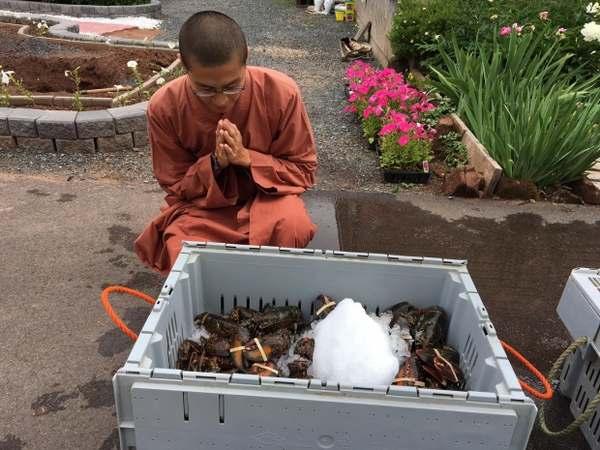monaci buddisti aragoste 2