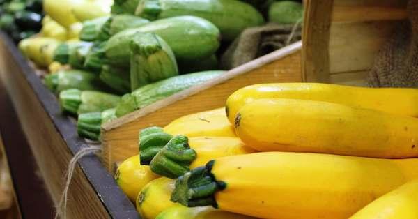 zucchine proprieta