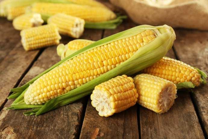 pannocchie di mais ricette