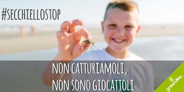 secchiello stop