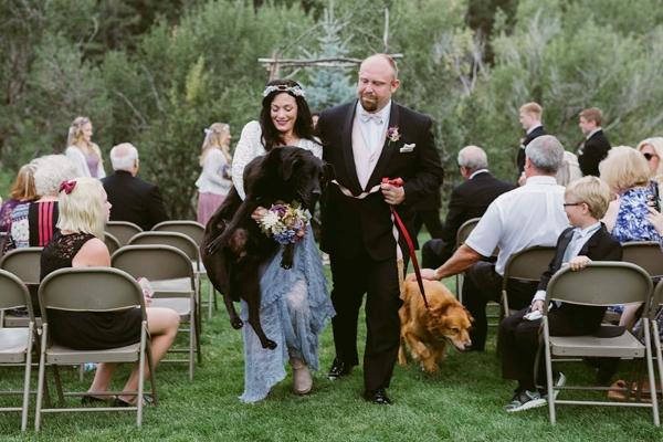 cane 15 anni matrimonio1