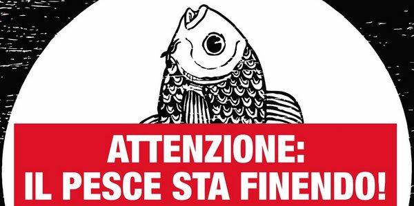 frode pesce fresco