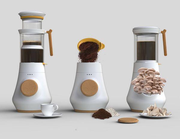 caffe funghi 4