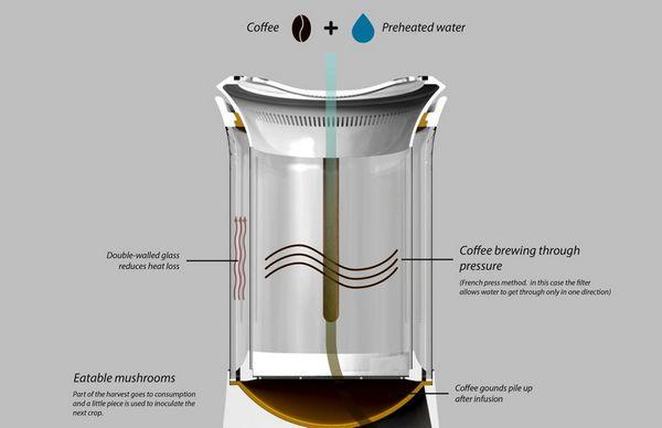 caffe funghi 6