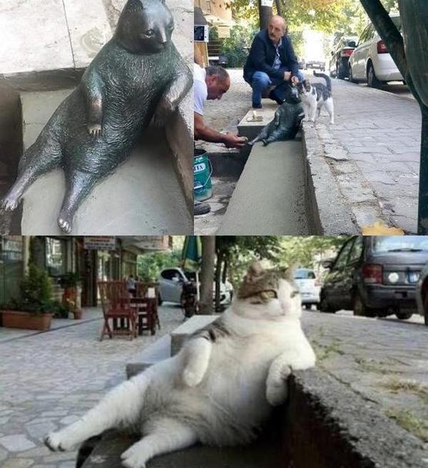 gatto statua 3