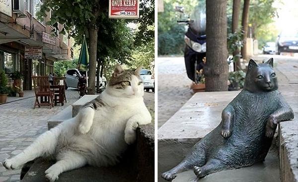 gatto statua 6