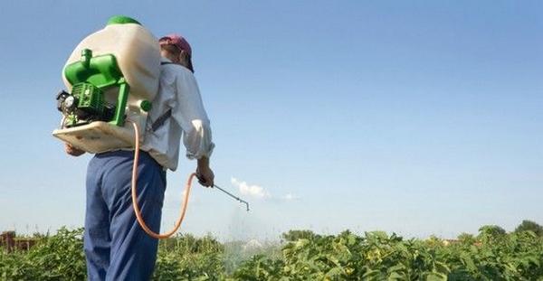 gruppo no pesticidi 1