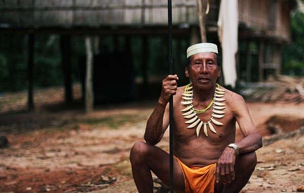 indigeni petrolio