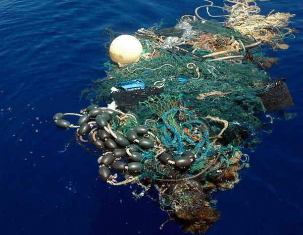 isola di plastica 4