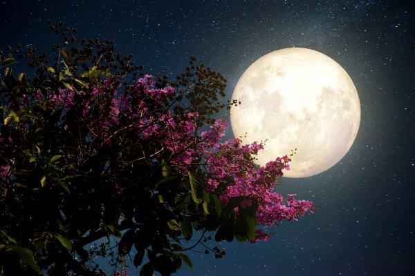 luna-pleiadi_18ott16
